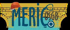Meriç OSGB Edirne Logo
